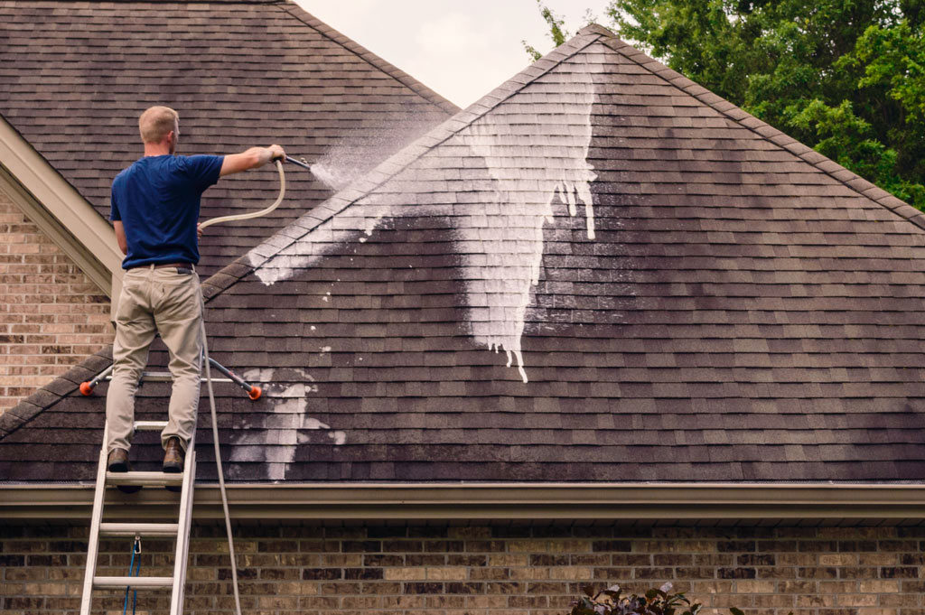 "clean - ""Clean Your Roof!"""
