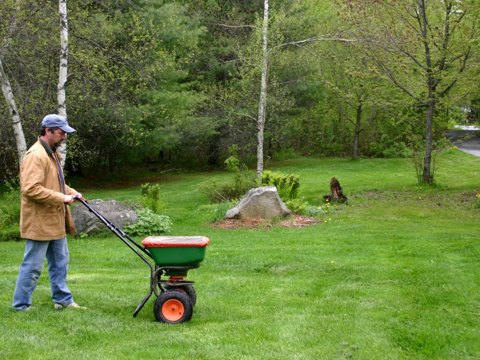 fertalize - Lawn Maintenance