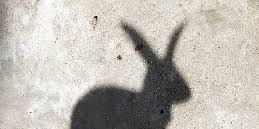 shadow of bunny on pavement - DIY Ideas: Make Your Own Ten Ton Trojan Easter Bunny